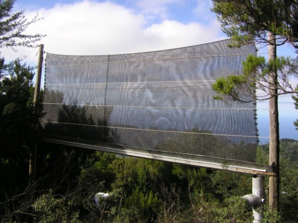 Atrapanieblas de 12 metros cuadrados  en el Parque Rural de Teno. El agua captada se almacena en un depósito de 60 m3 para usos forestales del Parque./Tiempo.com