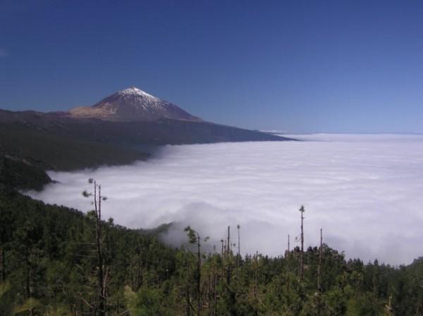 Mar de nubes en la vertiente Norte de Tenerife, con el Teide al fondo./Tiempo.com