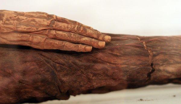 Momia. La mano del guanche.